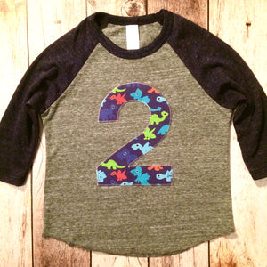 2nd Dinosaurs birthday shirt two navy grey Boys Birthday Shirt 2 3 4 5 6 7 8 Year Old  Birthday sports raglan basball T Rex monsters