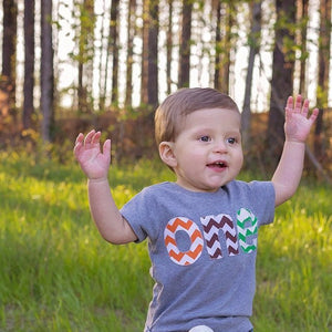 grass green, orange, brown chevron one for 1st Birthday shirt Number- Pick a chevron color on grey Fall Autumn Farm Pumpkin patch orchard