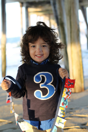 Birthday Shirt, Royal and White Long Sleeve Navy birthday Shirt, Old Biggie, boys birthday shirt, two shirt, 2nd birthday, 2 year old, boy
