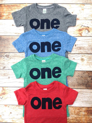 1st birthday shirt boy l first birthday outfit l colors- mint green red grey blue