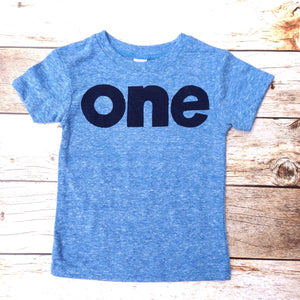 Boys 1st Birthday shirt navy blue, mint, grey, red, one kids birthday theme first party screen print