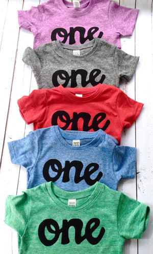 Screen Printed Boys One Birthday Shirt Red Blue Grey Mint Green Purple 1st Black Kids Party 1 Year Old Baby Infant