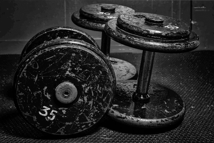 Building Mass with 5x5 Training - Transparent Labs