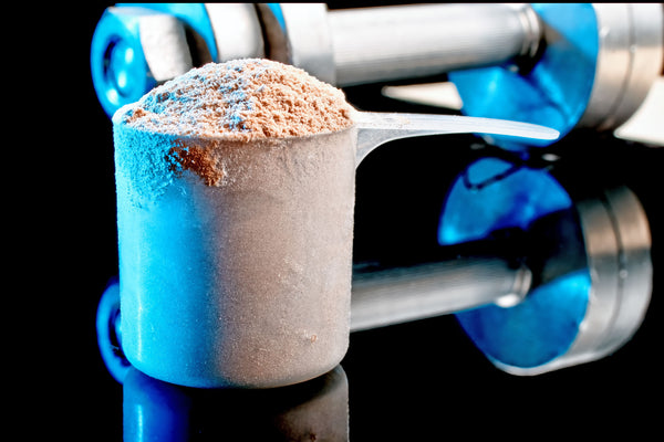 How to Identify the Best Protein Powder for Weight Gain