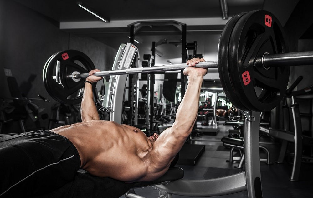 The Perfect Chest Manifesto: Which Bench Press is Best - Transparent