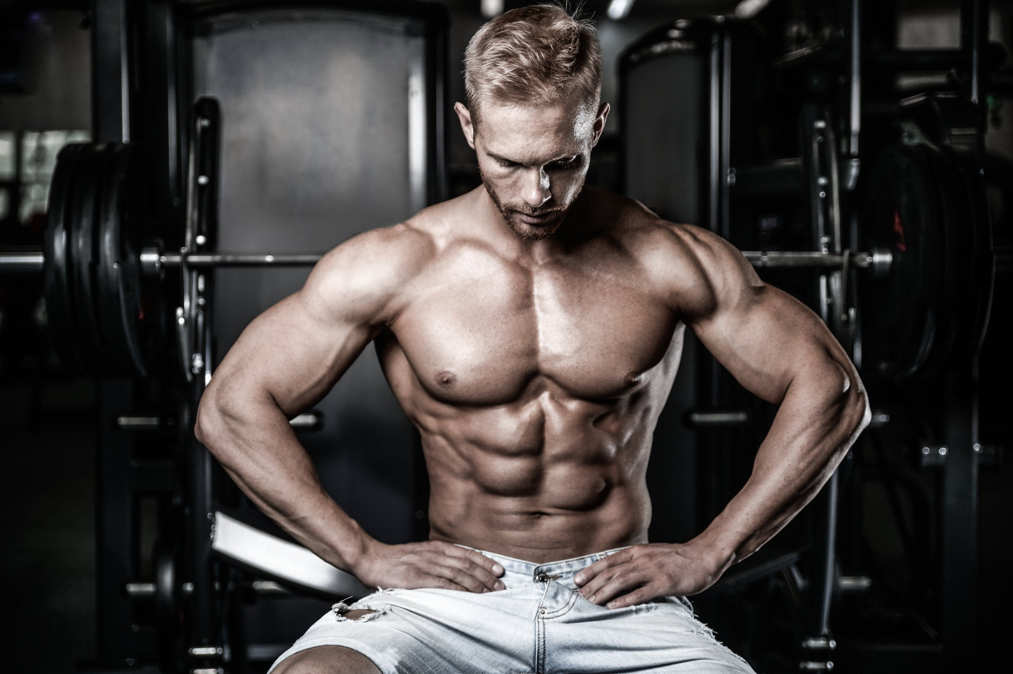 Top Fat Burners For Rapid Fat Loss Transparent Labs