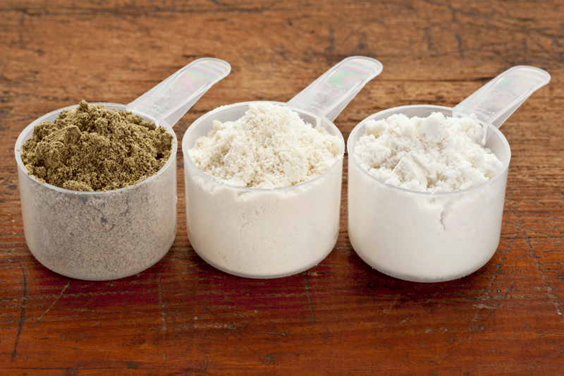 how much protein a day to build muscle