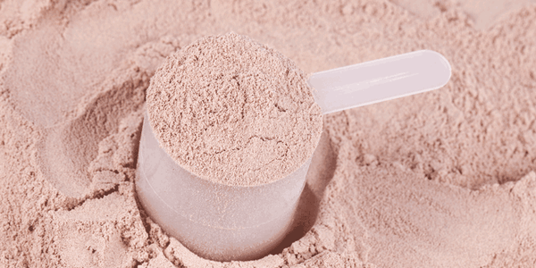Grass-Fed vs. Grain-Fed Whey Protein - How Do They Compare?