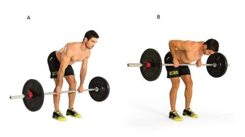 Bentover barbell Row