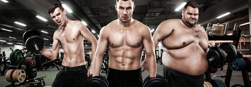 Mesomorph Diet & Workout Guide: Complete Protocol