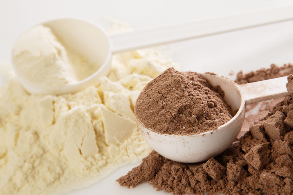 whey protein vs isolate: protein powder closeup