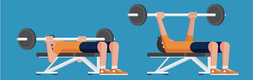 The Perfect Chest Manifesto: Which Bench Press is Best