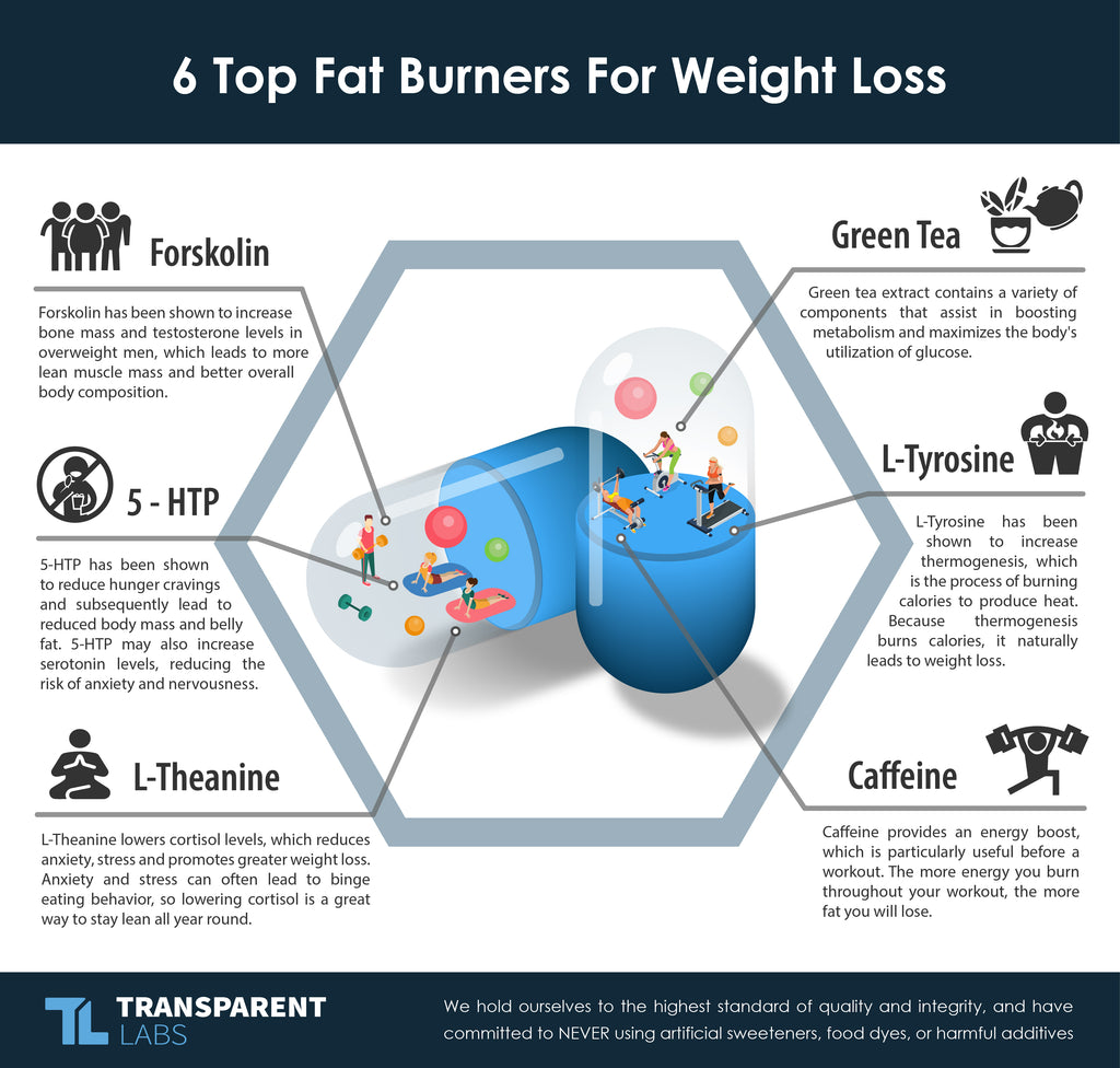 6 top fat burners for weight loss diagram