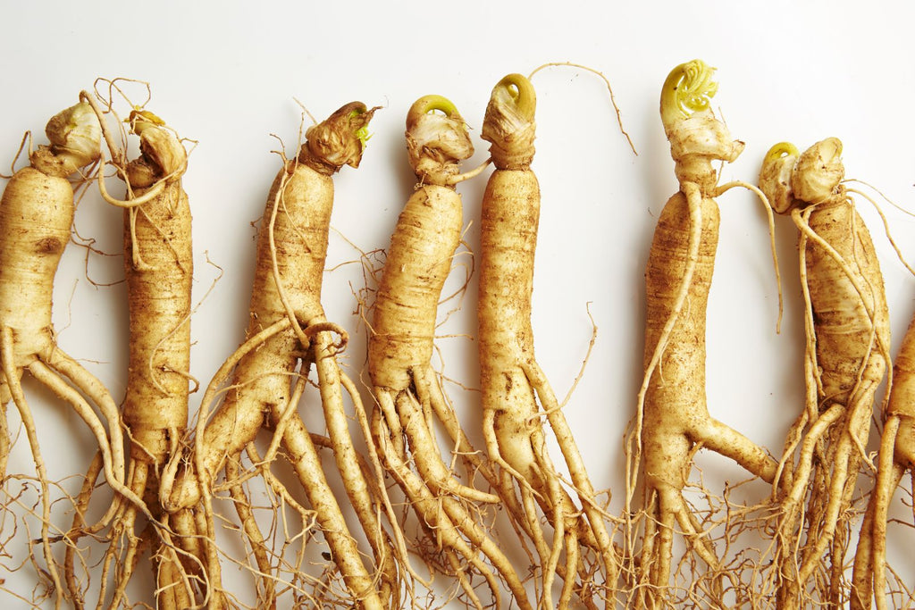 Raw ginseng roots