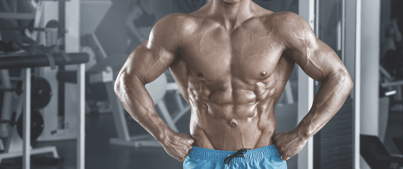 Macros For Building Muscle - Transparent Labs