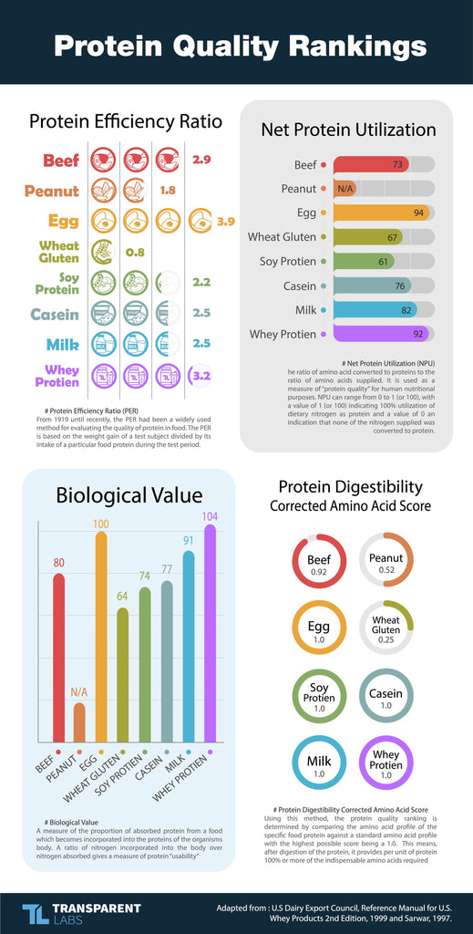 whey protein vs isolate: protein quality rankings chart