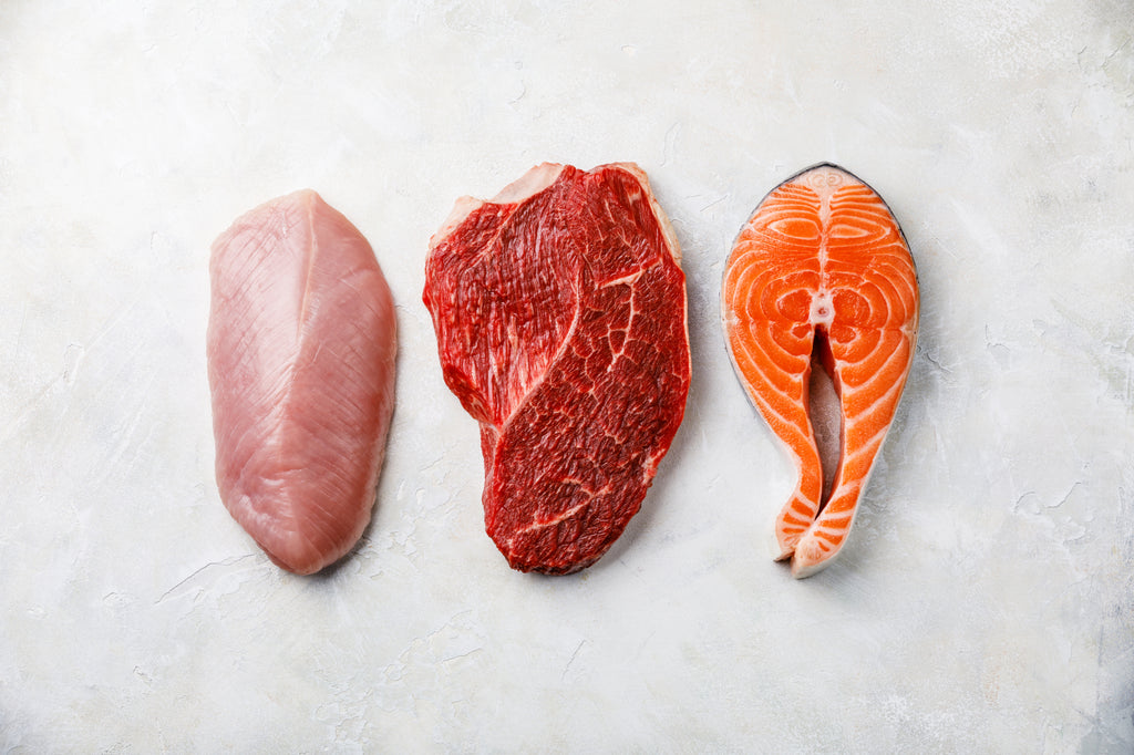 grams of protein