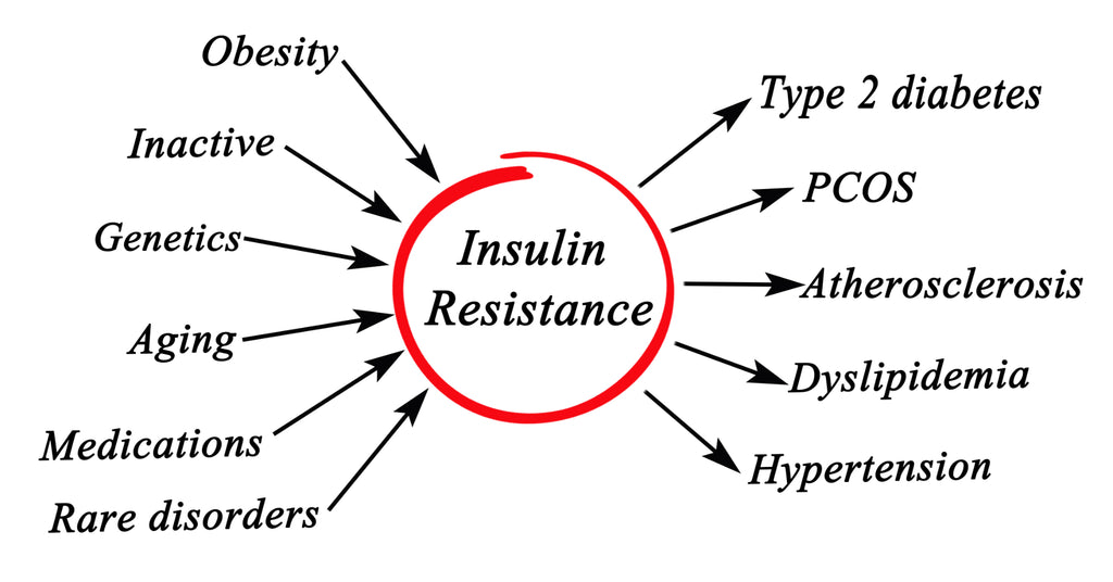insulin resistance cause