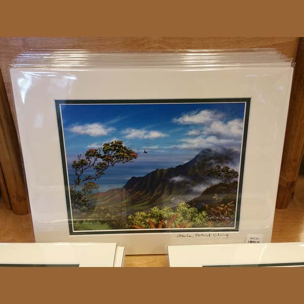 11 X 14 Matted Prints, by Patrick Ching , Art - Patrick Ching, The Kauai Store