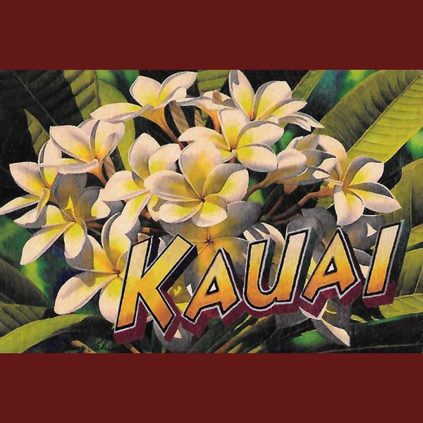 Wooden Kauai Postcard - Plumeria, by Hawaiian Woody's , Home - Hawaiian Woody's, The Kauai Store  - 1
