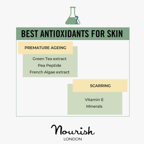 Best Antioxidants For Skin Concerns: Premature Ageing, Scarring