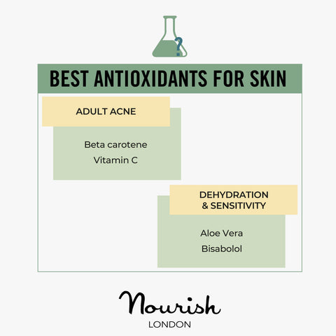 Best Antioxidants For Skin Concerns: Adult Acne, Dehydration & Sensitivity