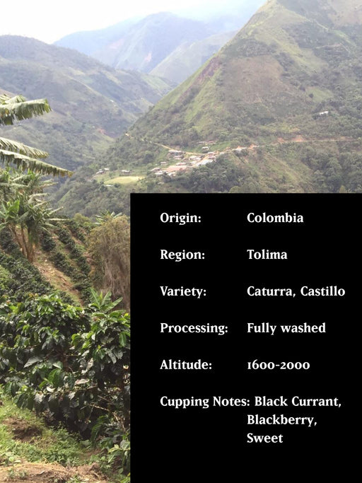 TOLIMA ORGANIC, COLOMBIA, FULLY WASHED