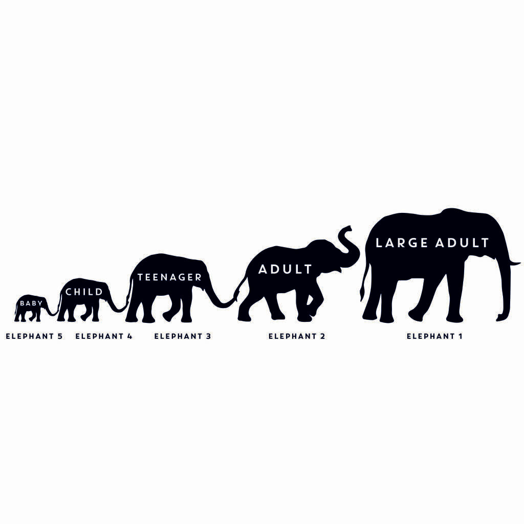 Personalised Elephant Family Door Mat