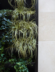 Close up of vertical garden with marble slabs in a variety of shades