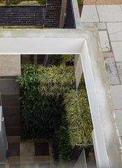 Vertical garden as seen from above