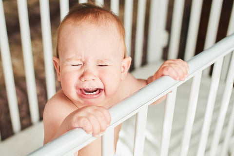 Does your Baby hate his crib?