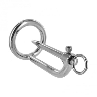 Stainless Steel Cock Ring and Urethral Plug