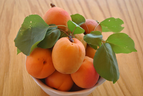 Tomcot Apricots