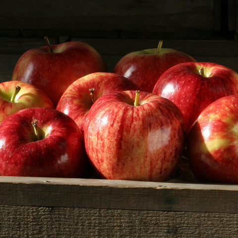 Apples (Gala) (Extras)