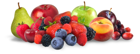 Sioux Falls Fresh Fruit Program