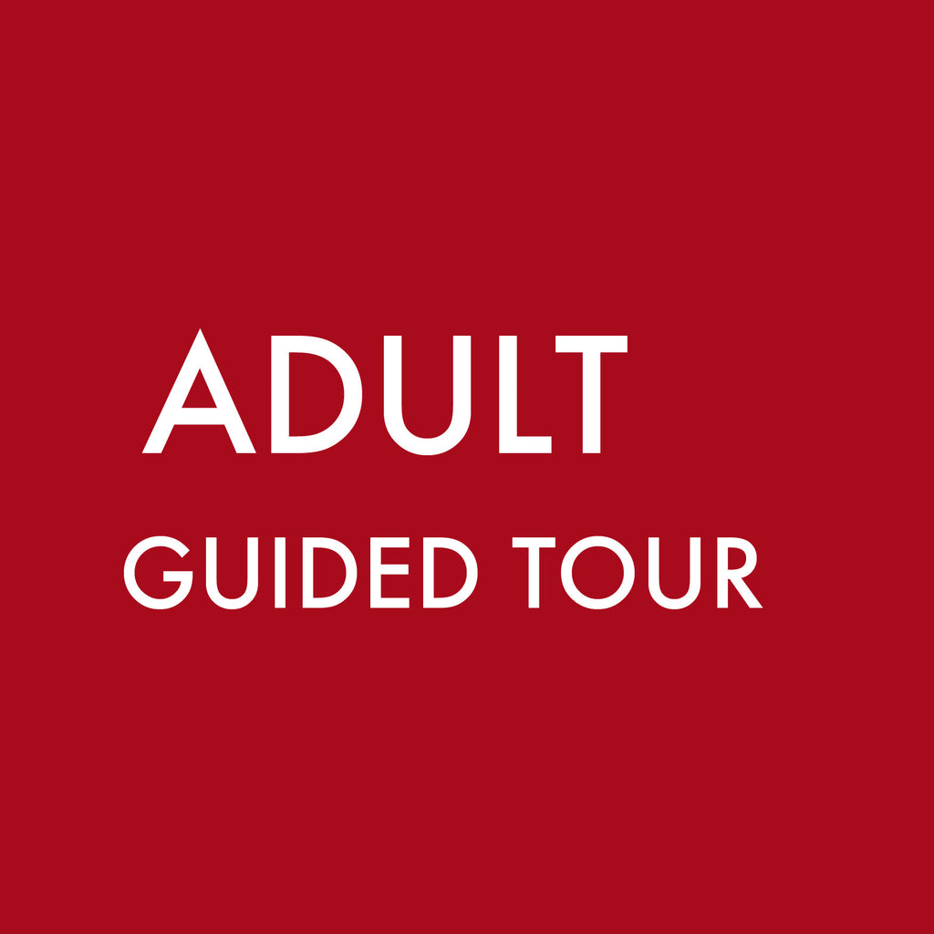 Guided Tour Group (Adult)