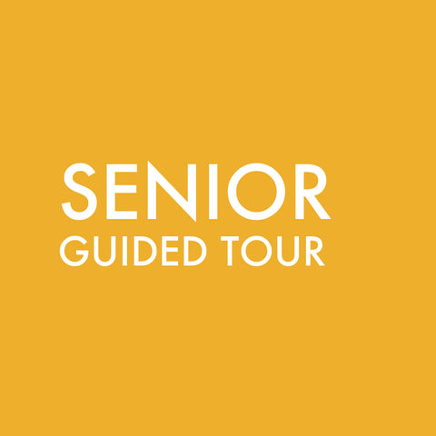 Guided Tour Group (Senior)