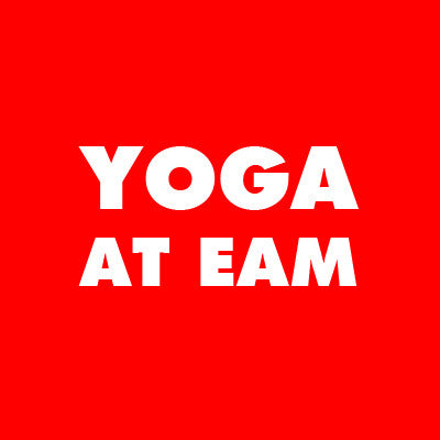 Yoga at Elmhurst Art Museum