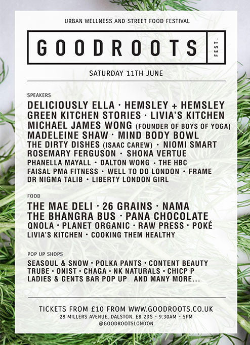 PolkaPants at Good Roots Festival