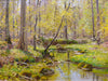 "Frank A. Barney (American, 1862-1954), ""Spring - Burtis Pond"", oil on board, signed"