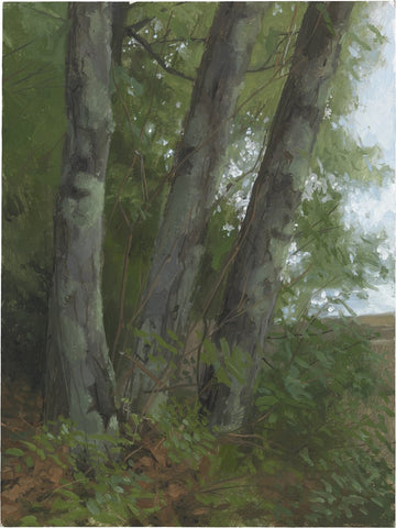 Jacob Collins (American, b. 1964), Three Maples, 2010, oil on panel, signed