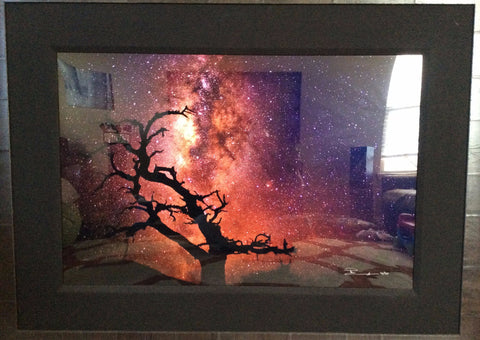 "Peter Lik (Australian, b. 1959), ""Tree of the Universe"", c-print, signed, ed. 950"