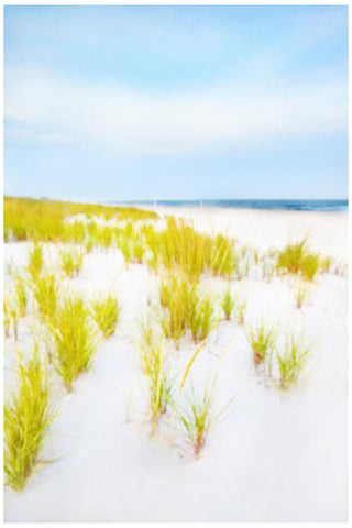 "Cheryl Maeder (American, Contemporary), ""Hampton Dunes"", photograph, signed, ed. 10"