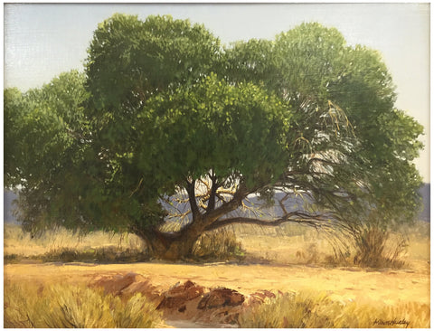 "Wilson Hurley (American, b. 1924), ""Arizona Cottonwood"", oil on board, signed"