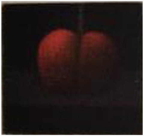 Yozo Hamaguchi (Japanese, 1909-2000), California Cherry, 1987, mezzotint, signed and numbered