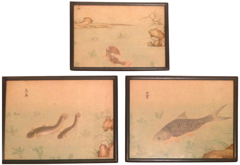 Three Japanese Watercolor Paintings of Fish