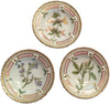 "Three Danish Porcleain ""Flora Danica"" Butter Pat Plates"