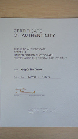 "Peter Lik (Australian, b. 1959), ""King of the Desert"", silver halide Fuji crystal archive print, signed"