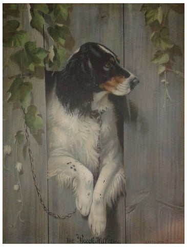 "After Alexander Pope Jun. (American, 1849-1924), ""The Brook Hill Dog"", 1911, lithograph in colors, on tin"