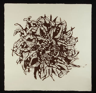 "Tracy Lang (American, b. 1971), ""Sweet Gum Seed Pod"", 2010, woodcut"